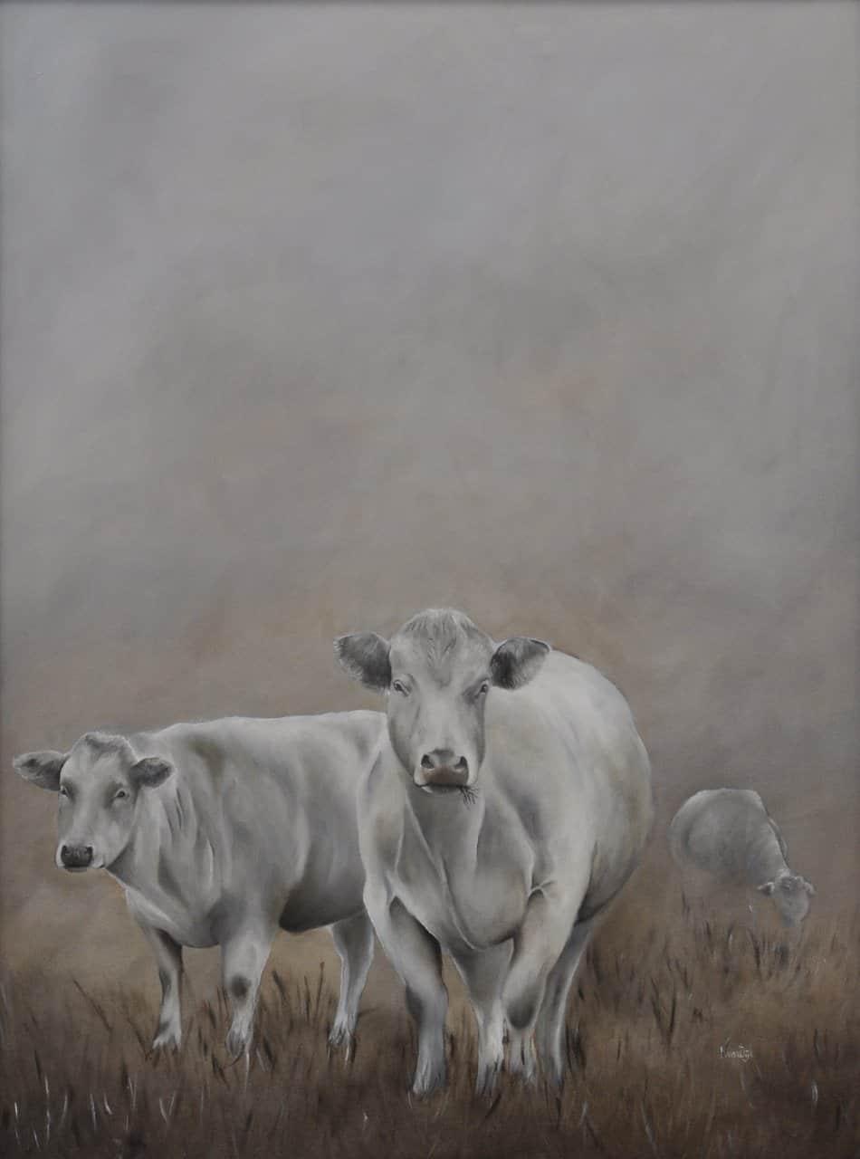 Nicolette - Koeien in de mist